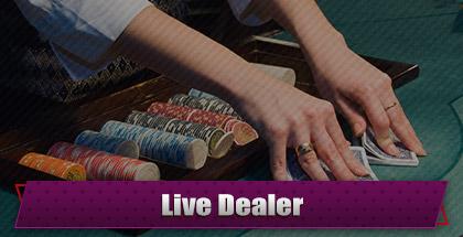 Playamo_Live Dealer
